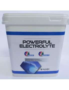 POWERFUL ELECTROLYTE IN POLVERE PER CAVALLI-15506