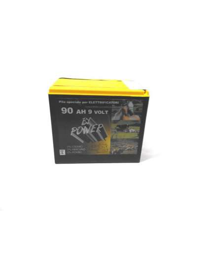BATTERIA PER RECINTO 10000 ORE BI-POWER